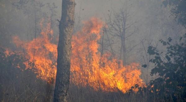 пожар недалеко от Банско