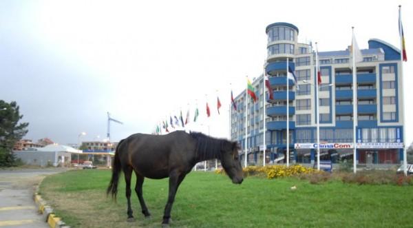 особый статус курортных зон в Болгарии