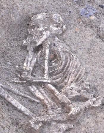 скелету 7500 лет