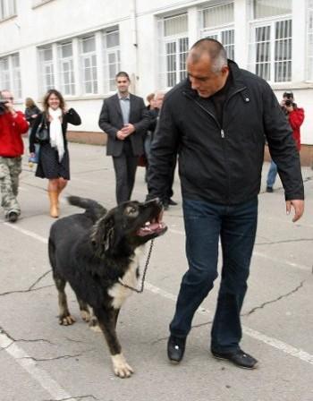 Бойко Борисов: болгары как собаки, которых надо держать на поводке