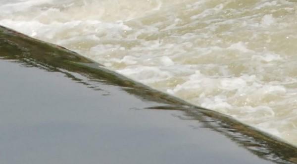 загрязнена река Мыти у Ихтимана