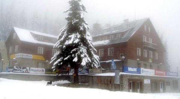 """Правителството прие поправката """"Витоша ски"""" в закона за горите"""