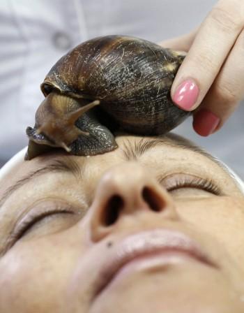 Слузта на охлюва възстановява кожата