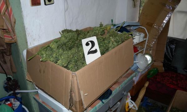 51-годишна жена е с обвинение за отглеждане на марихуана