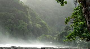 """Без будилник"": Зелените диви Кариби"