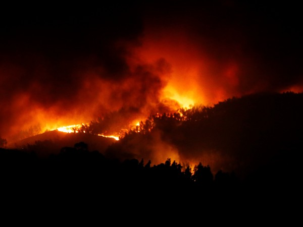 Бушуващите пожари в централна Португалия, са отнели живота на 57