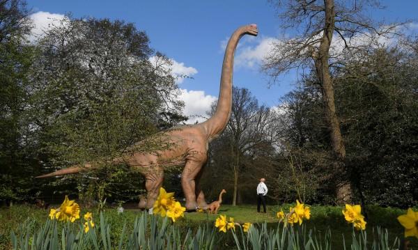 Една намерена частица: Динозаври са тичали по нашите земи!