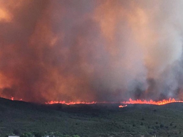 Огромни горски пожари наложиха евакуацията на около 10 000 души