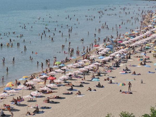 """За бум на монокините по плажовете съобщават наблюдателни спасители. """"Все"""