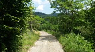 """""""Без будилник"""": Борущица – скритото райско кътче в планината"""