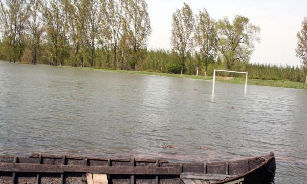 Бракониери плъзнаха по Дунав, ловят риба с... ток