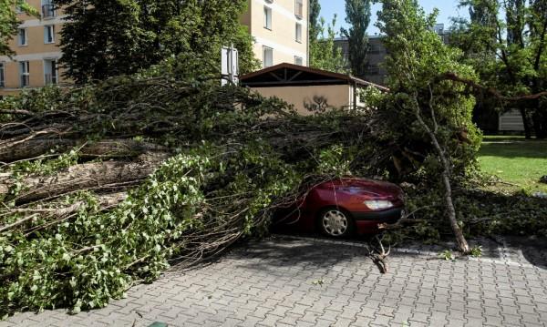 Четири жертви на ураганни бури в Полша