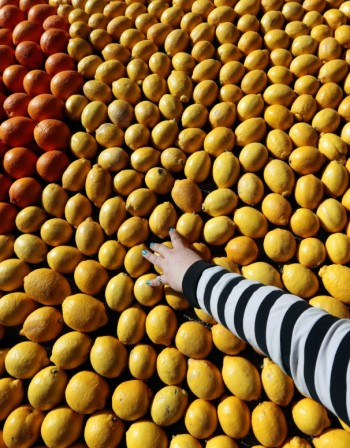 Подсилете организма с витамин С