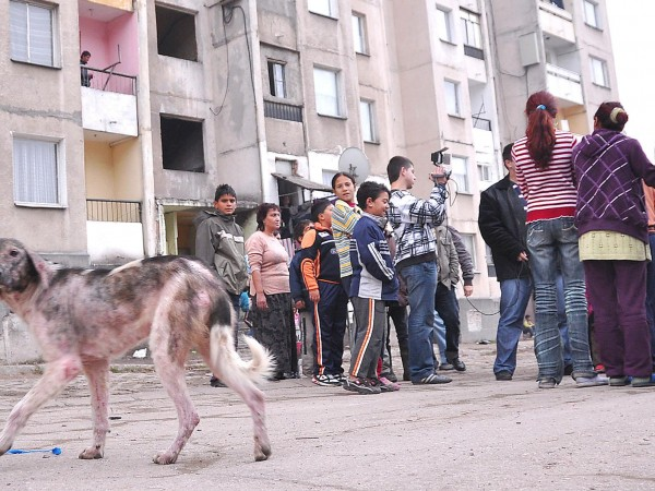 Щом България не усвоява парите за ромите, нека ги вземе