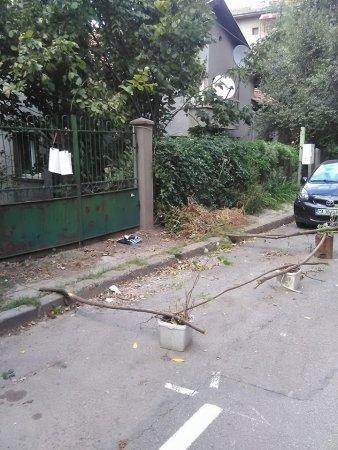 Л(укс)озенец - опазване на място за паркиране